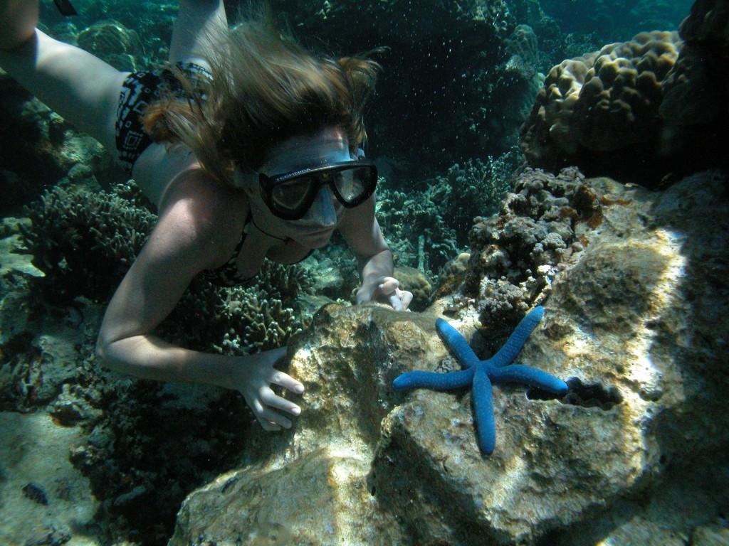 Palau Wreck Diving