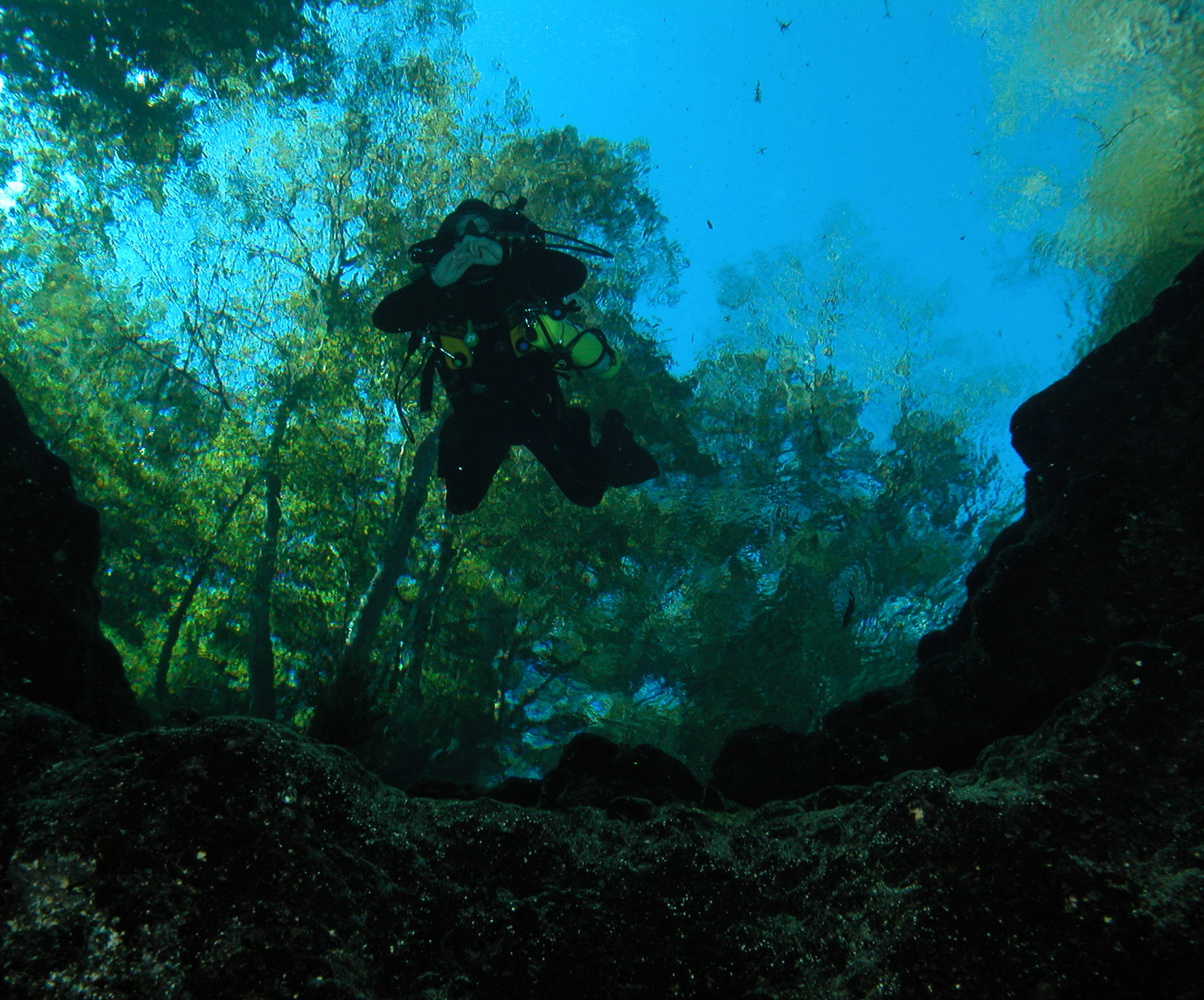 Ginnie Springs John Weisbrich in the gin clear water dropping into Devils Eye